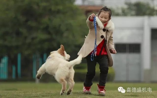 一个狗贩子卖狗给一个企业家的对话,新思维,老板